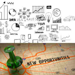B2B and B2C Opportunity  & Commercial Excellence